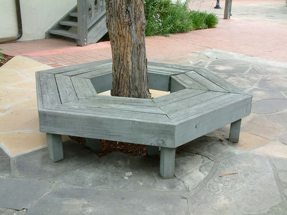 gray bench around tree