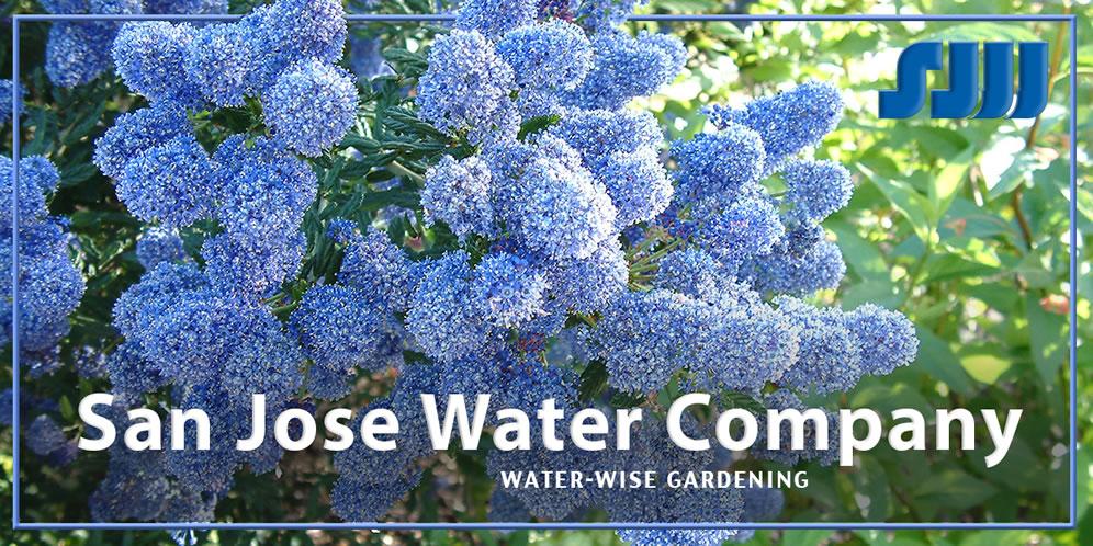 For A Custom Irrigation Schedule: Water Wise Gardening Water Calculator